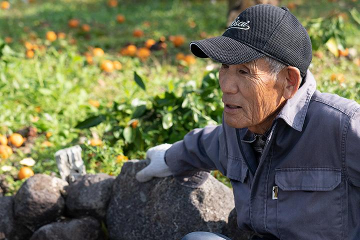 みかん農家久保田芳文さん 農業をはじめたきっかけ